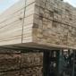 广东省建筑木方工地专用木方 桥梁木方   辐射松 黄松 规格齐全